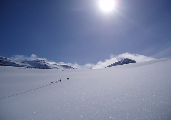 Backcountry skiing in northern Iceland